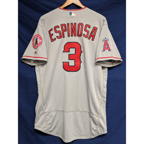 Photo of Danny Espinosa Team-Issued Road Jersey