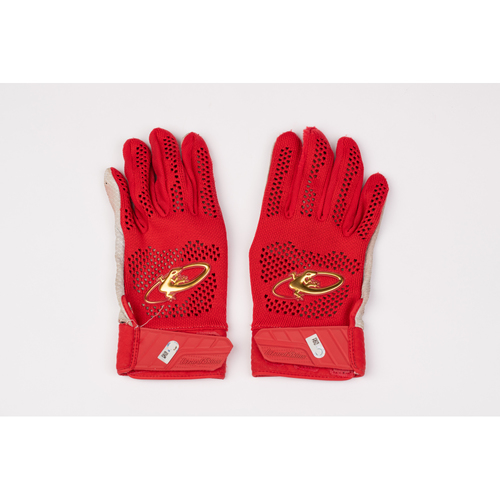 Photo of David Fletcher Team Issued Batting Gloves