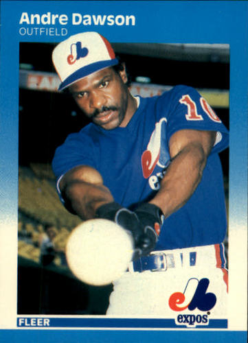 Photo of 1987 Fleer #316 Andre Dawson