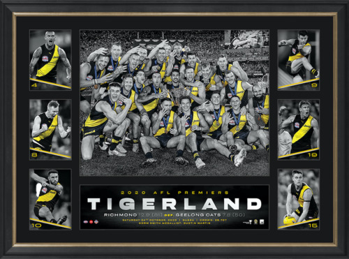 Photo of 2020 Premiers Tribute Frame