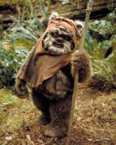 PREORDER Warwick Davis As Wicket 8x10 Autographed in Blue Ink Photo