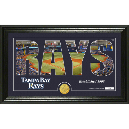 "Photo of Serial #1! Tampa Bay Rays ""Silhouette"" Panoramic Bronze Coin Photo Mint"