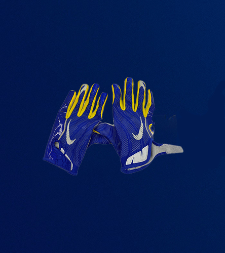Photo of Tyler Higbee Game Used Gloves - (11/18/2020 VS. San Francisco 49ers)