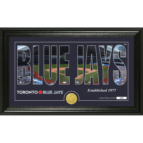 """Photo of Serial #1! Toronto Blue Jays """"Silhouette"""" Panoramic Bronze Coin Photo Mint"""