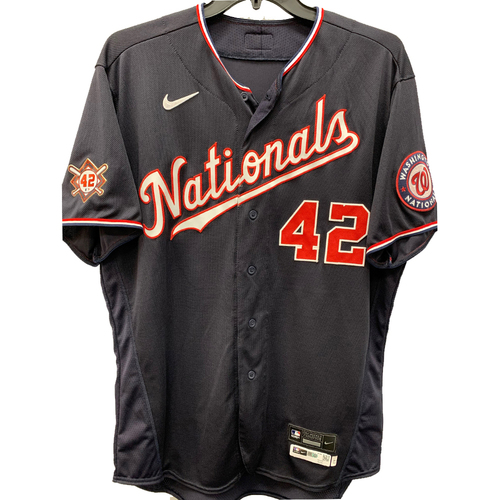 Photo of Sean Doolittle - Jackie Robinson Day Game Used Jersey