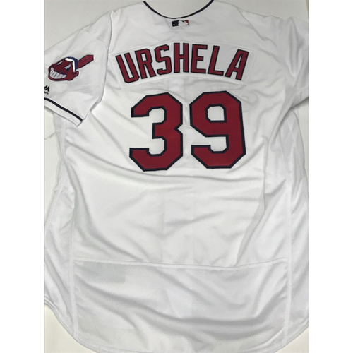 Photo of Gio Urshela Team Issued 2018 Home Jersey