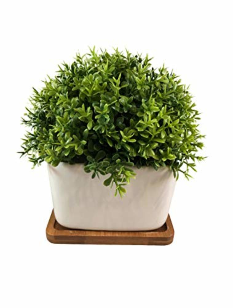 Photo of Peach Tree Farm Fake Plant for Bathroom/Home Decor, Small Artificial Faux Greenery for House Decorations (Potted Plants) (Clover with Tray)