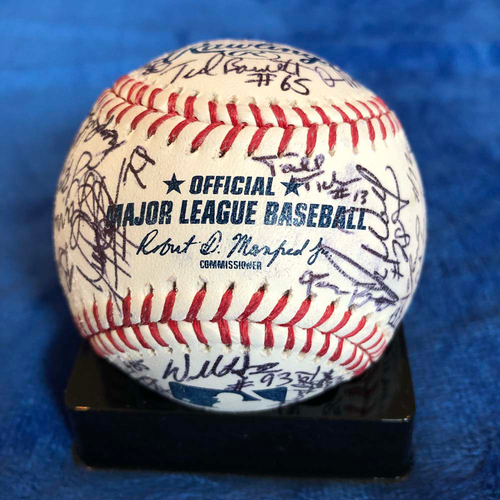 UMPS CARE AUCTION: Baseball Signed by 2019 Major League Umpires
