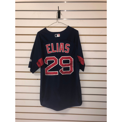 Photo of Roenis Elias Team-Issued Road Batting Practice Jersey