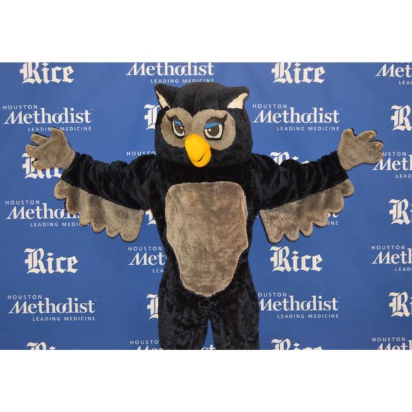 Photo of Sammy The Owl Rice Mascot Costume