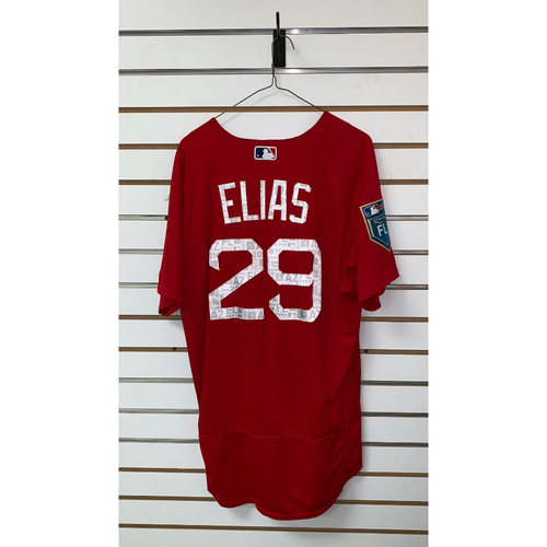 Photo of Roenis Elias Team Issue 2018 Spring Training Jersey