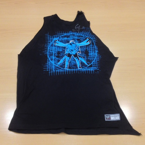 Chris Jericho WORN & SIGNED Authentic T-Shirt
