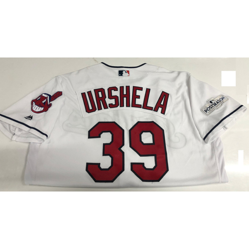 Photo of Gio Urshela Team Issued 2017 Post Season Home Jersey