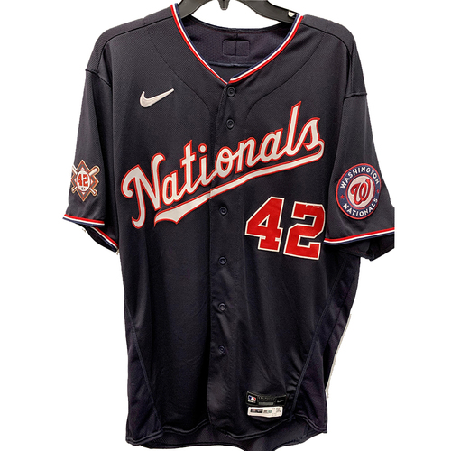 Photo of Yan Gomes - Jackie Robinson Day Game Used Jersey