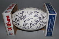 BILLS - 2015 MULTI SIGNED PANEL BALL (INCLUDING TYROD TAYLOR, SAMMY WATKINS, STEPHON GILMORE, CHRIS HOGAN, JERRY HUGHES, KYLE WILLIAMS AND OTHERS) SMUDGES ON PANEL DUE TO PLAYER HANDLING