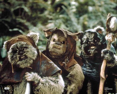 Chubbray and Ewoks