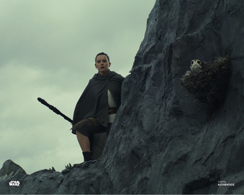 Rey with Porg