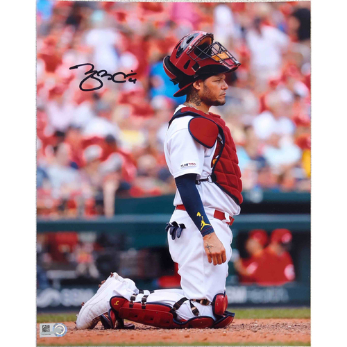 Photo of Cardinals Authentics: Yadier Molina Kneeling Autographed Photo