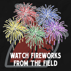 Photo of Watch Fireworks from the Field