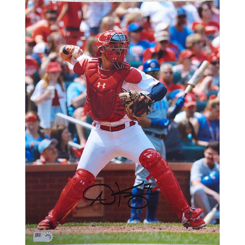 Photo of Cardinals Authentics: Andrew Knizner Autographed Photo