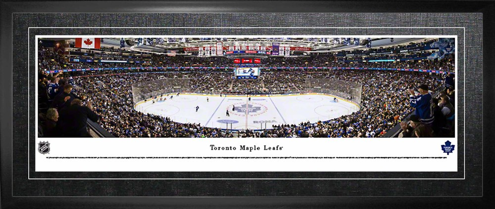Toronto Maple Leafs Framed Panorama Arena