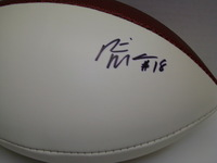 DOLPHINS - RISHARD MATTHEWS SIGNED PANEL BALL