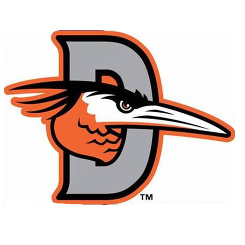 UMPS CARE AUCTION: Delmarva Shorebirds (Orioles A) Skybox for 25