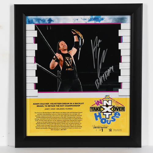Photo of Adam Cole SIGNED In Your House 2020 Signature Series Frame (#1 of 1)