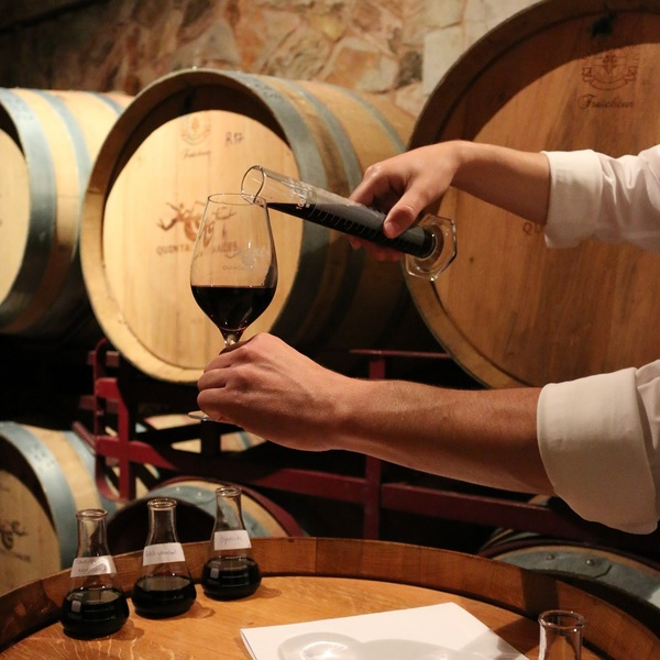 Click to view The Winemaker Experience.