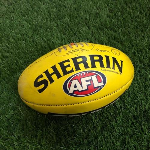 Photo of Carlton 2021 Round 19 Match Used Ball - #6
