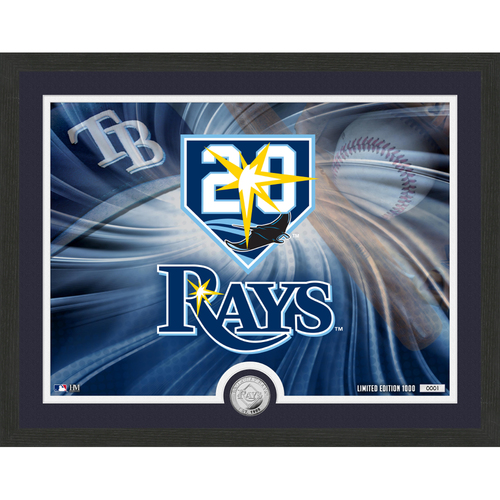 """Photo of Tampa Bay Rays Pride 16""""x 20"""" Silver Coin Photo Mint"""