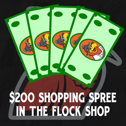 Photo of $200 Shopping Spree in Flock Shop
