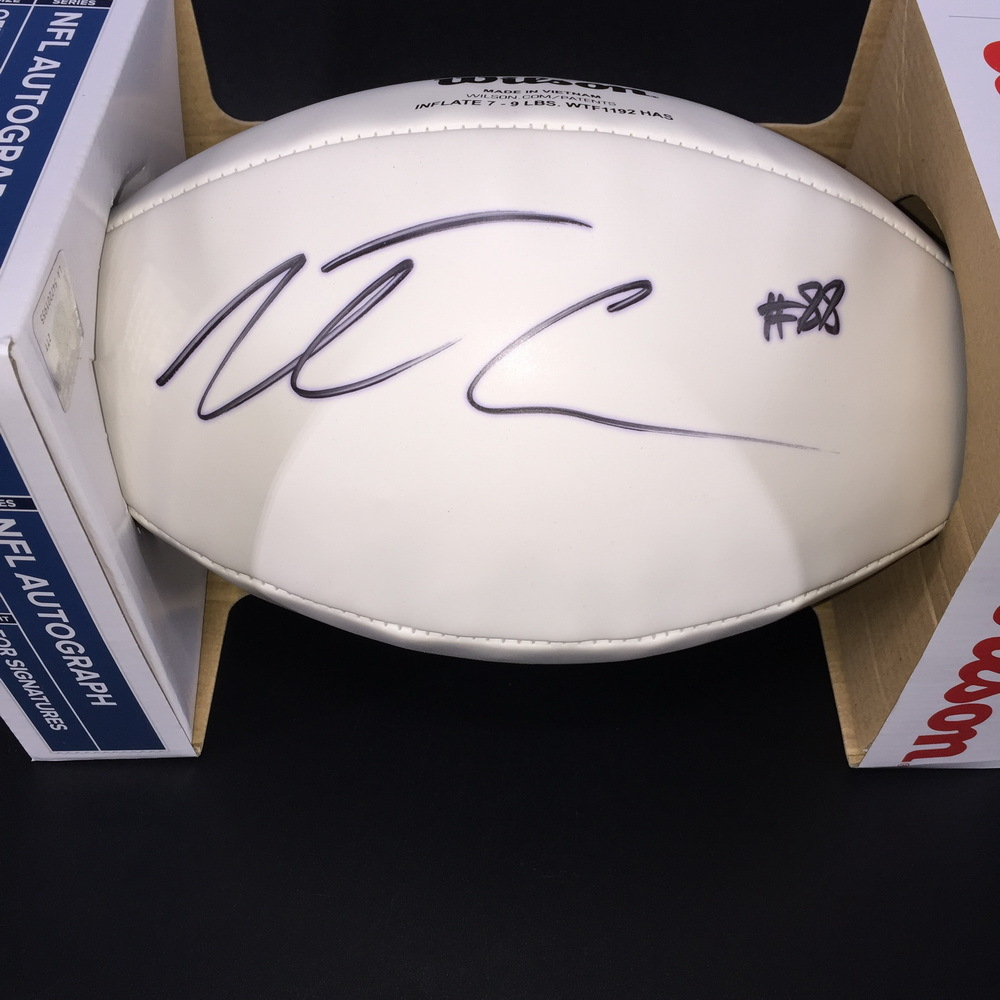 Dolphins - Leonte Caroo Signed Panel Ball