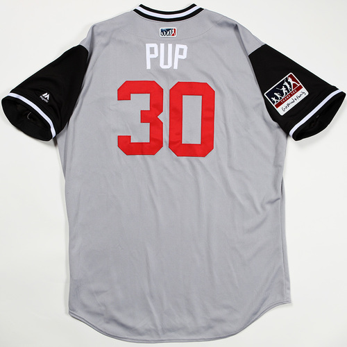 "Photo of Nicky ""Pup"" Delmonico Chicago White Sox Game-Used Jersey 2018 Players' Weekend Jersey"