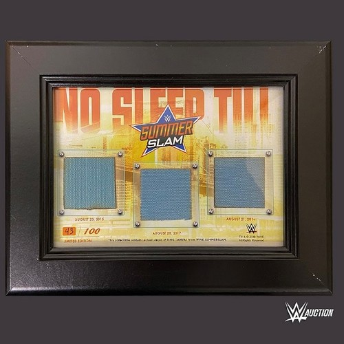 Photo of SummerSlam 2015, 2016, and 2017 USED Ring Canvas Frame (Random Number)