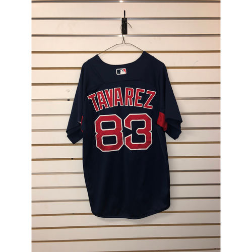 Photo of Aneury Tavarez Team-Issued Road Batting Practice Jersey