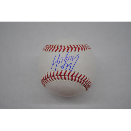 Photo of Autographed Lou Gehrig Day Baseball - Jose Abreu