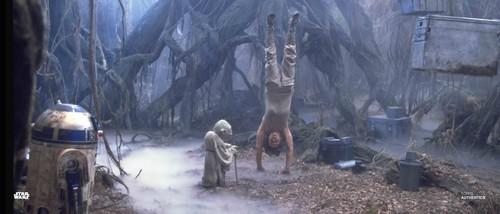 Luke Skywalker, Yoda and R2-D2