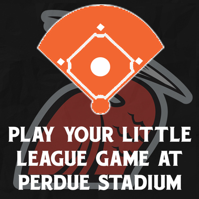 Play Your Little League Game at Perdue Stadium