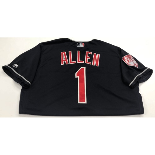 Photo of Greg Allen Game-Used 2019 Spring Training Jersey