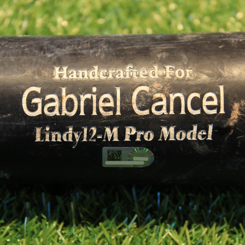 Photo of Team-Issued Broken Bat: Gabriel Cancel #77