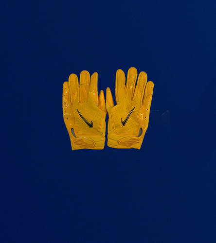Photo of Tyler Higbee Pre-Game Used Gloves (9/26/2021 VS. Tampa Bay Bucs)