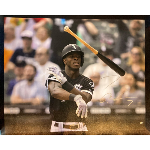 Photo of Tim Anderson Autographed Bat Flip Canvas (Framed)