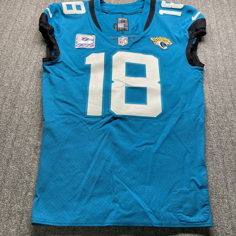 NFL Auction | Crucial Catch - Jaguars Chris Conley Game Used ...