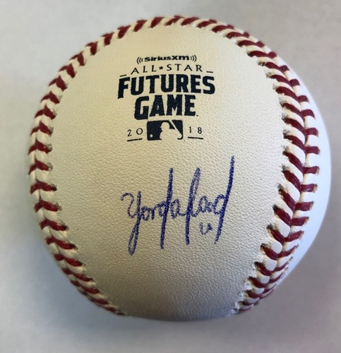 Photo of Yordan Alvarez Autographed 2018 Futures Logo Baseball