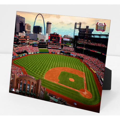 Photo of Busch Stadium PleXart