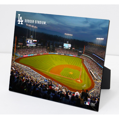 Photo of Dodger Stadium PleXart