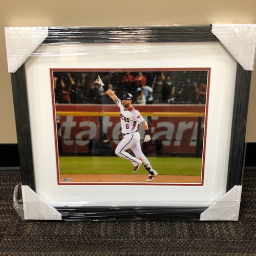 Photo of David Peralta Autographed and Framed 11x14 Photo