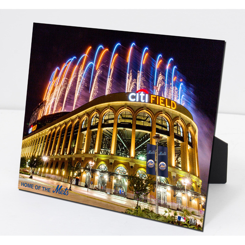 Photo of Citi Field PleXart