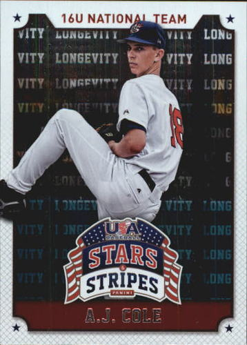 Photo of 2015 USA Baseball Stars and Stripes Game Gear Materials #33 DJ Stewart/299
